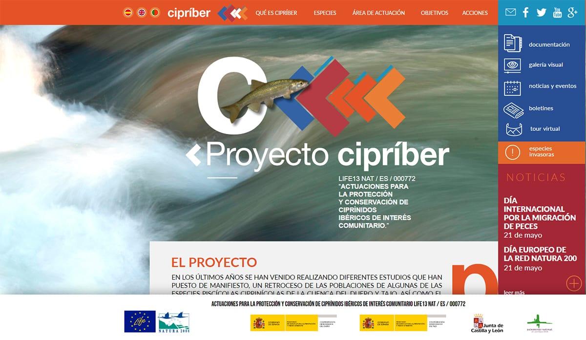 mantenimiento web Cipriber
